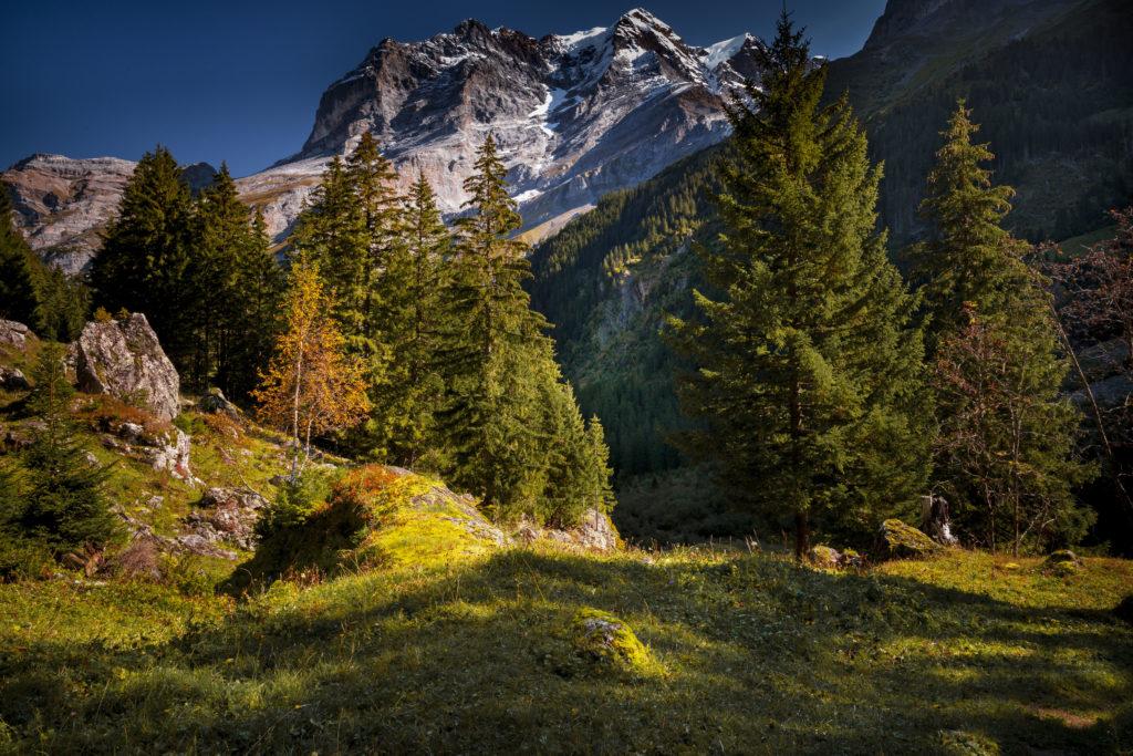 Paysages d'automne 16