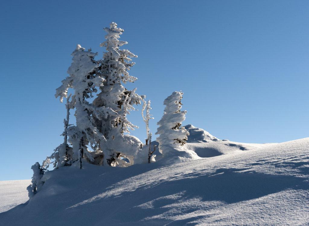 Paysages d'hiver 05